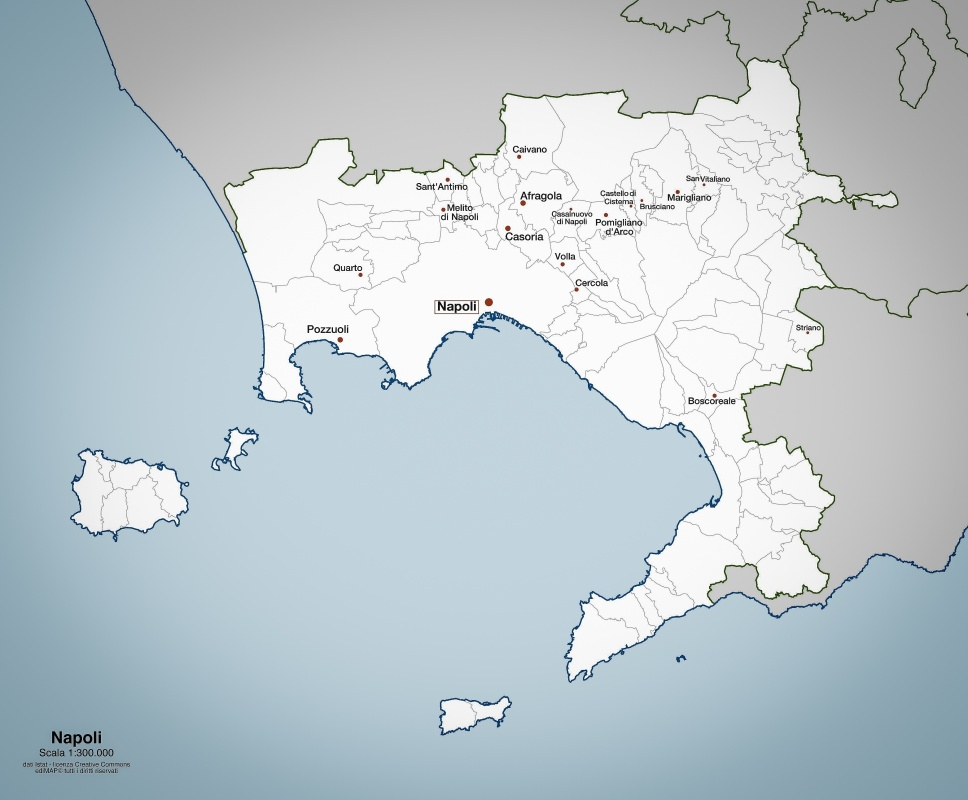 città metropolitana di napoli, 219