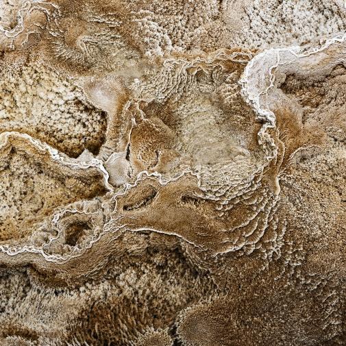 Yellowstone NP, Wyoming (USA)