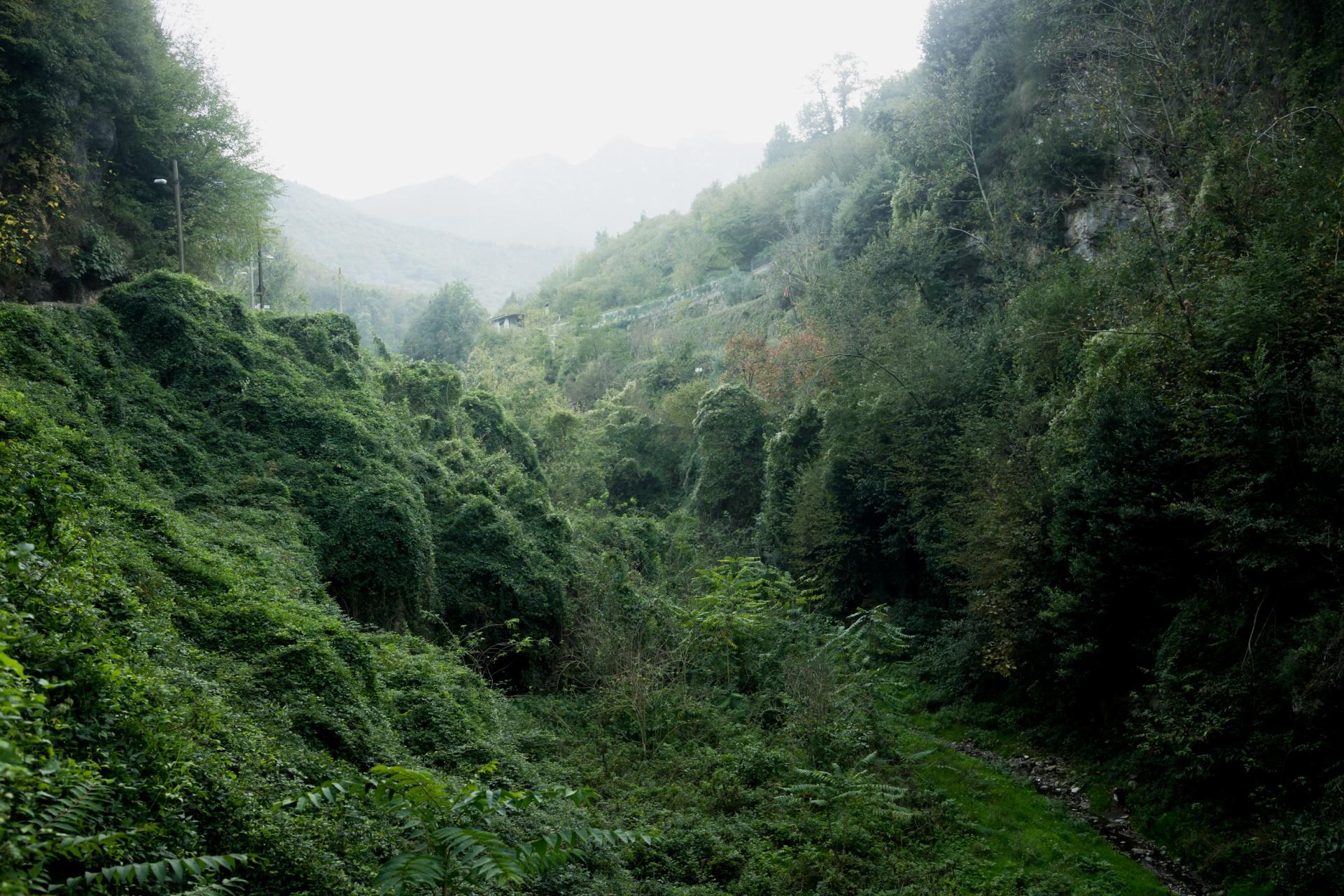 la valle dei mulini, la valle dei mulini è uno scrigno prezioso che ancora aspetta un recupero definitivo.