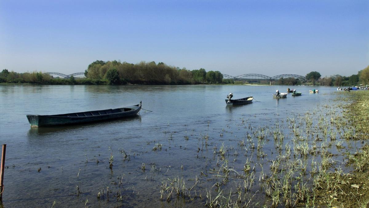 Il PO nei pressi di Mezzana Bigli (PV) - Po river near Mezzana Bigli (PV)