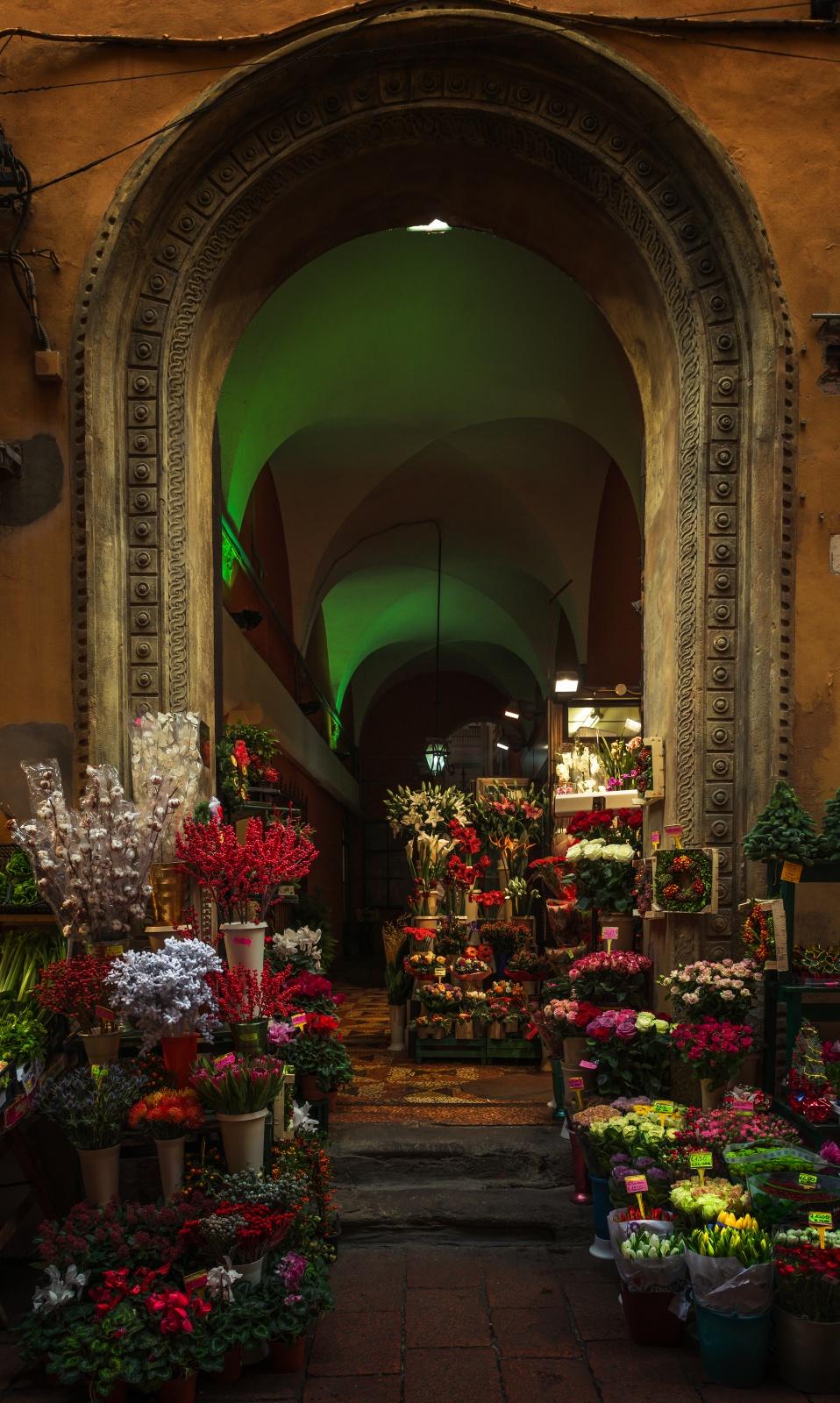 Negozio di piante e fiori a Bologna