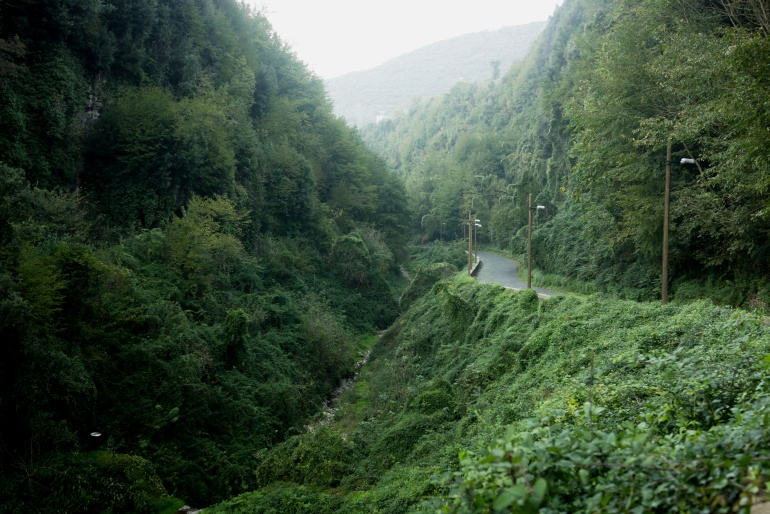 la valle dei mulini